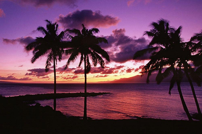 Featured image of top 30 yoga retreats for November 2017 with purple, orange, yellow and grey sunset over the ocean and palm trees at 3-Day Sound Healing, Yoga and Restore Retreat in Hawaii, USA