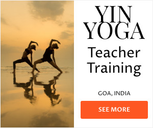 Banner image with white backgroun and yin yoga teacher training sunset pic at beach in Goa, India and orange see more button