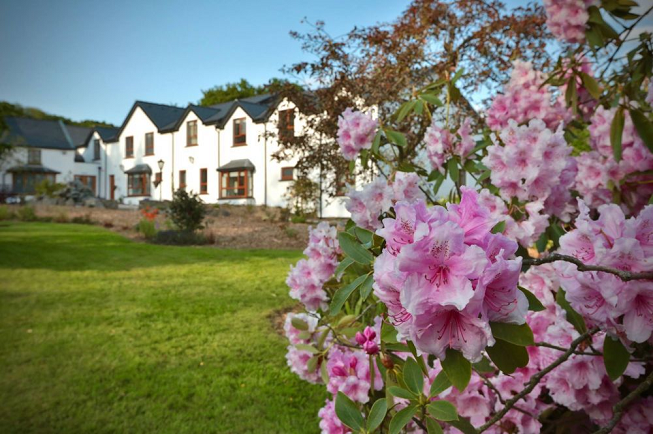 Featured image for 3-day juice cleanse and yoga retreat in Ireland with beautiful pink and white flowers blooming in front of newly designed retreat resort