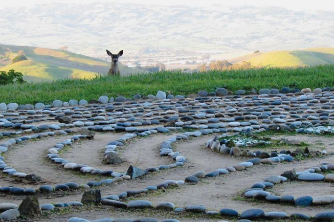 Featured image of top 30 yoga retreats for November 2017 with a lovely nature setting of rocks in a spiral formation on the ground and a live deer overlooking from green grass hill at the 3-Day Yoga and Meditation Retreat in Petaluma, Northern California