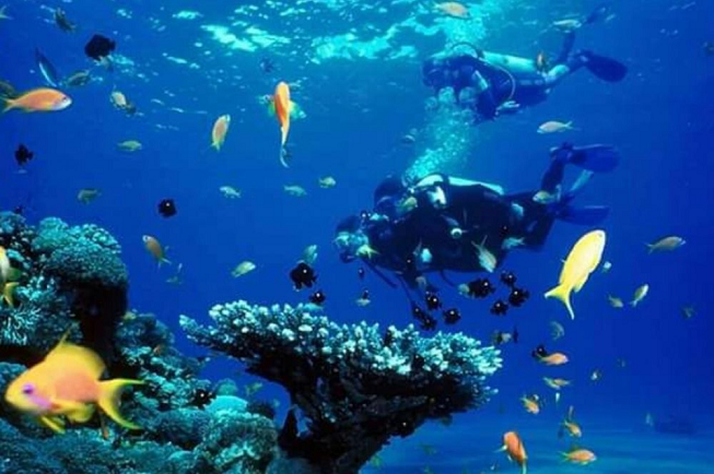 Featured image of top 30 yoga retreats for November 2017 with yogi in crystal blue water diving with various types of fish at the 8-Day Yoga and Diving Retreat on Fuerteventura, Spain